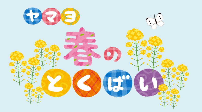 勝川弘法市に出店します!(3月)
